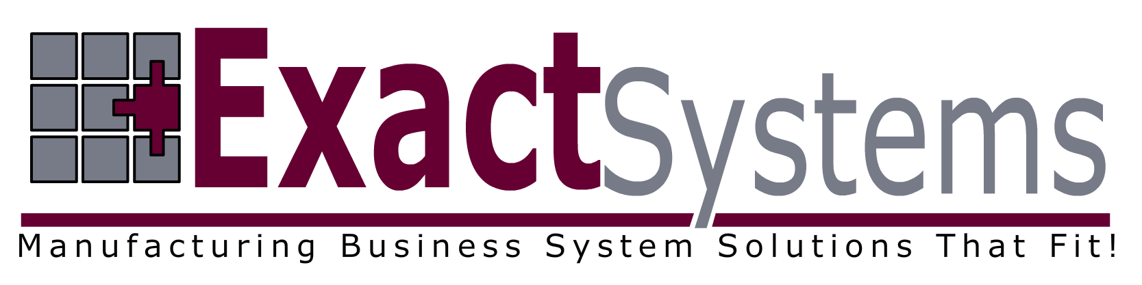 Exact Systems Long Logo